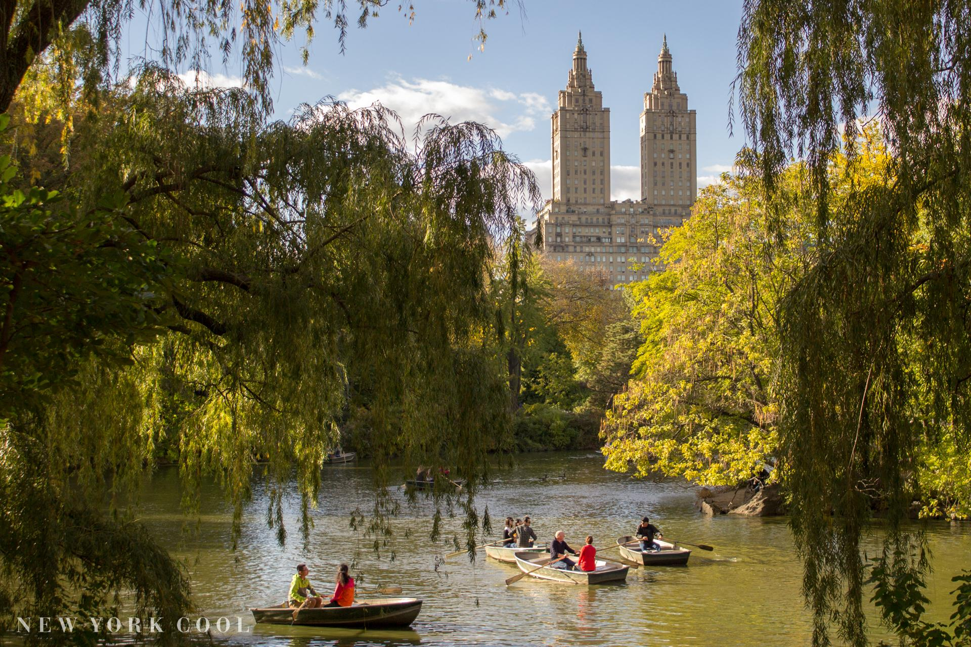 Central Park | New York Cool